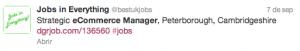 oferta de empleo ecommerce manager