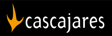 cascajares - mba executive