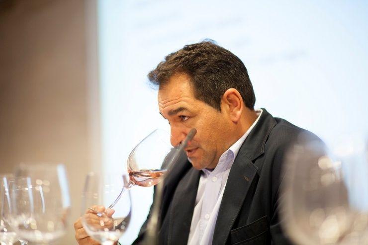 Iniciacion técnica a la cata de vinos