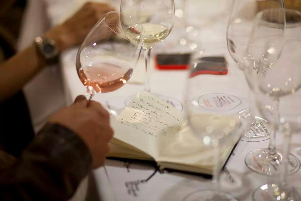 Iniciacion técnica a la cata de vinos 2