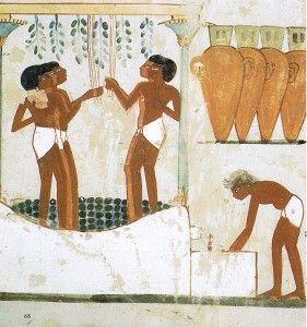 Vino en Egipto - Bodega