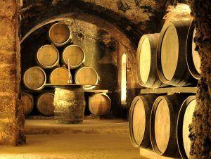 barricas-vino-bodega