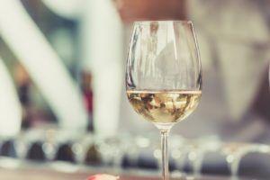 sector vitivinícola y turismo enológico