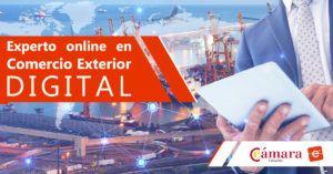 Experto online en Comercio Exterior Digital
